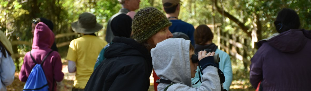 Two park visitors look for birds through binoculars.