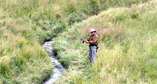 Man fishes from the grass covered bank of a narrow stream.