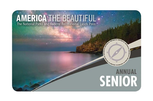 2019 Senior Annual Pass