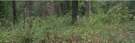 Isaac Roberts Family Cemetery Near Site of Pemberton's Second Headquarters, Champion Hill Battlefield