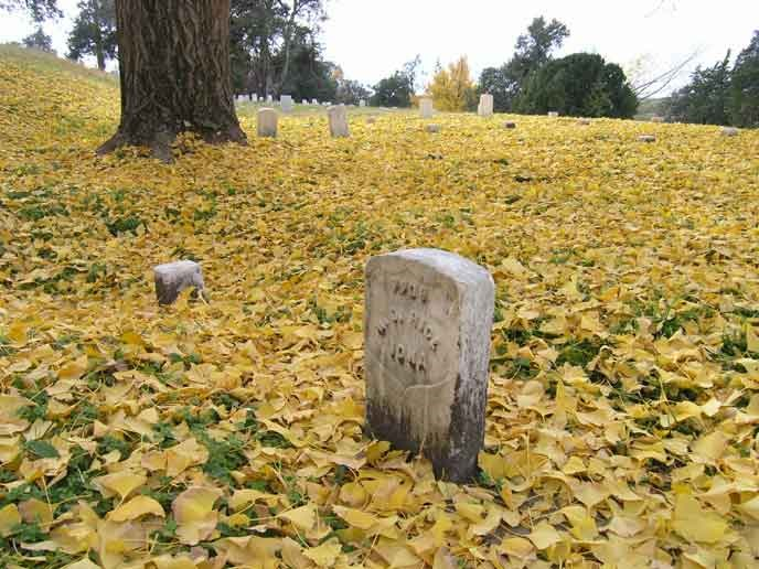 tombstone-gingko-leaves3