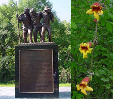 African American Monument and Crossvine Flowers