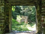 The view is through the door of a sugar plantation ruin, showing another ruin and vegetation in the background.
