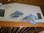 a pod of 4 dolphin models, shown in swimming action, hanging from the Visitor Center rafters