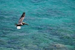 Offices Staff Virgin Islands National Park U S National Park