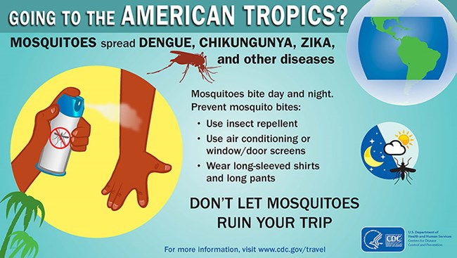 CDC Mosquito Poster