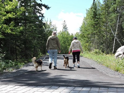 A couple walks with two leashed dogs down a paved trail bordered by scenic forests.