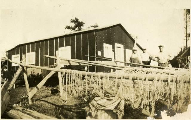 Emil Torry Fish Camp