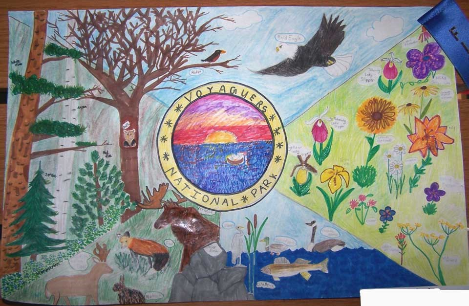 Artwork from student depicting different areas of the park such as Minnesota flowers, fish, mammals and trees.