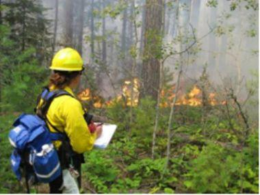 A fire fighter records data on Mica Island in 2007.