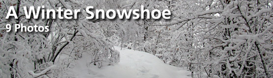 "Click here for ""A Winter Snowshoe"" photo gallery"
