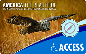 An Interagency Access Pass depicts a gray owl flying over a golden field.