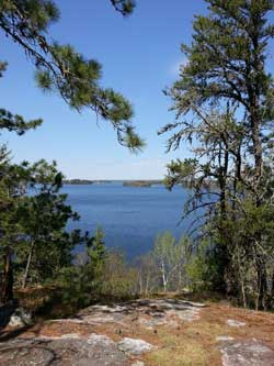Collins_Blind_Ash_Bay_Trail_Log_Bench_Viewpoint_May_2014