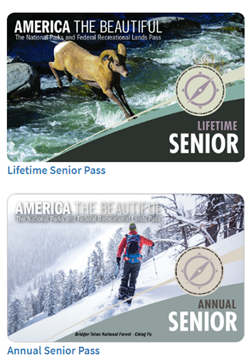 A lifetime senior pass depicts a bighorn sheep leaping across a whitewater stream, and a annual senior pass depicts a skier traveling across a snowy slope.