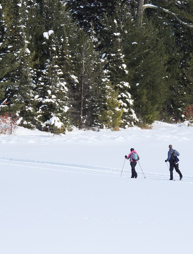 Two cross country skiers carrying ski poles, heavy coats, and back packs ski across a frozen, snow-covered lake surface towards a forested shoreline.