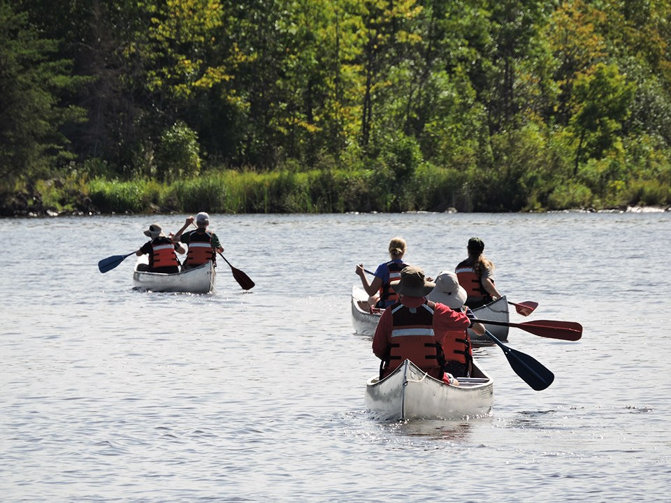 Six adults in life jackets paddle three canoes across open water towards a forested shoreline.