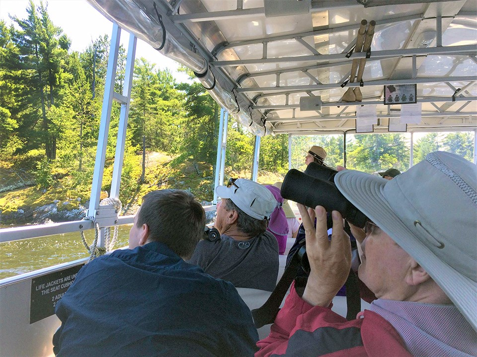 A group of adults (one of whom holds a pair of binoculars to her eyes) gaze at vivid green scenery from a tour boat.