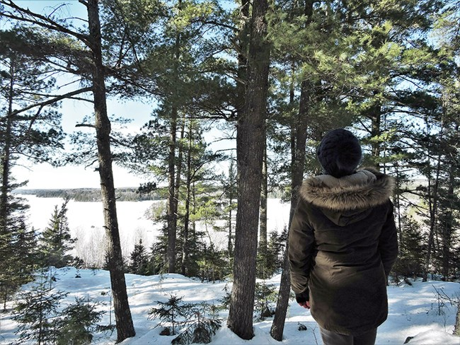 A person in a thick, hooded jacket and knit cap stands on a tree-lined ridge and looks towards a large, frozen lake dotted with forested islands.