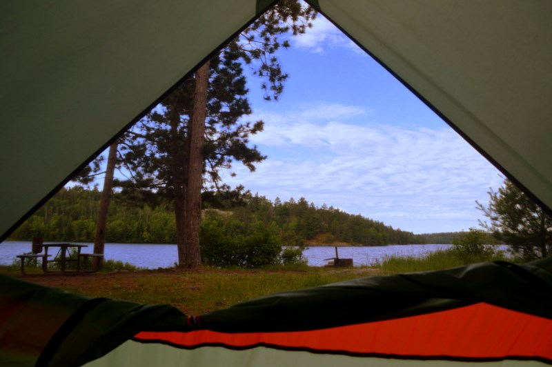 Looking out, from inside a tent, into the park
