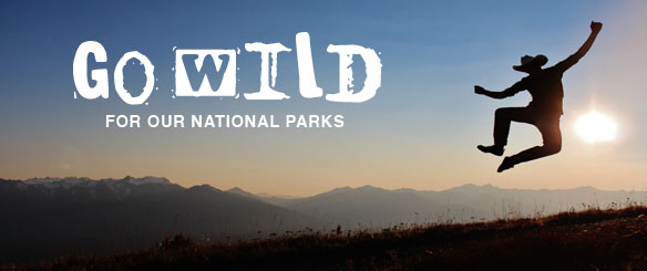 Go Wild for Our National Parks