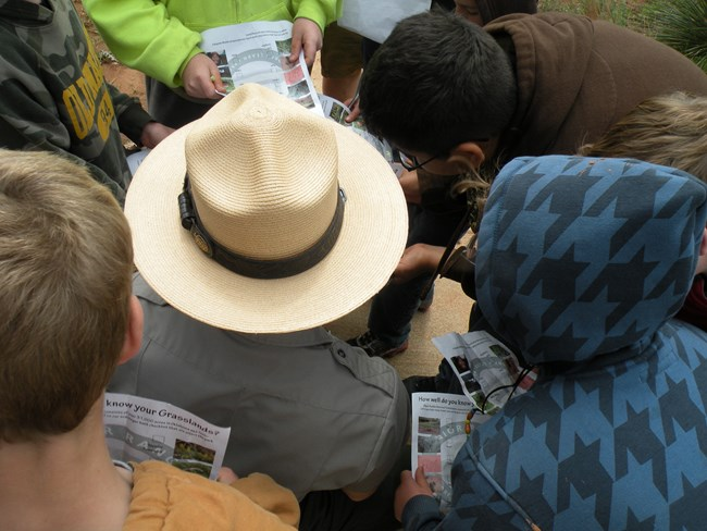 View of park ranger from above surrounded by children working on junior ranger books.