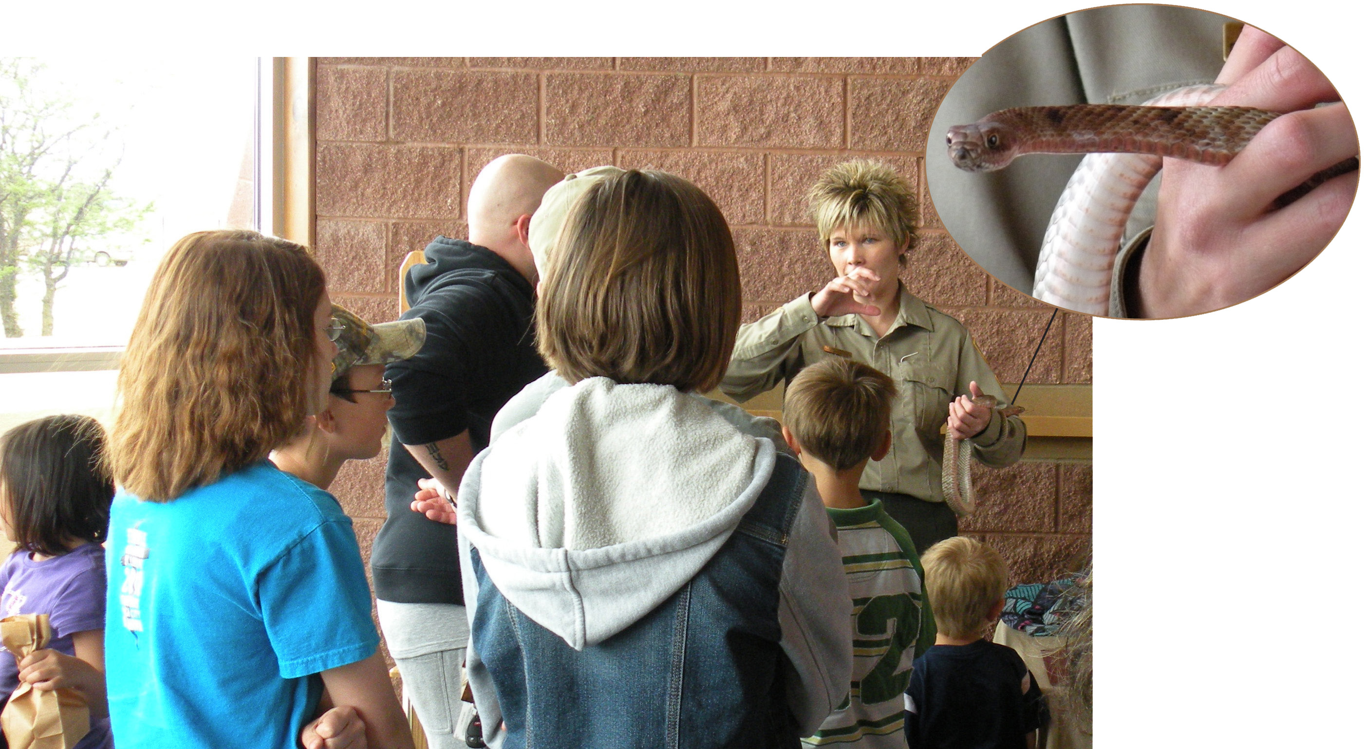 Visitors learn about the benefits snakes have on the environmant.