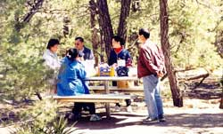 People gathered at a picnic table