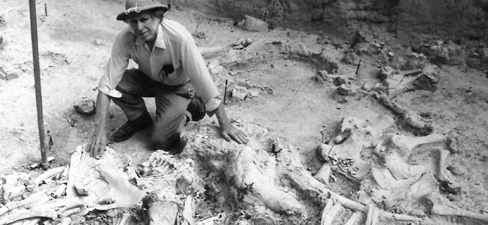 Volunteer Ralph Vinson kneeling next to fossils at the site.
