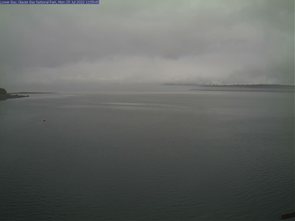 Live view of Lower Glacier Bay, looking toward Point Carolus