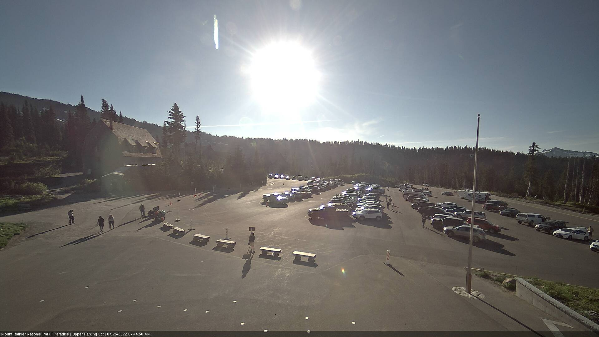 Paradise Parking Lot Cam