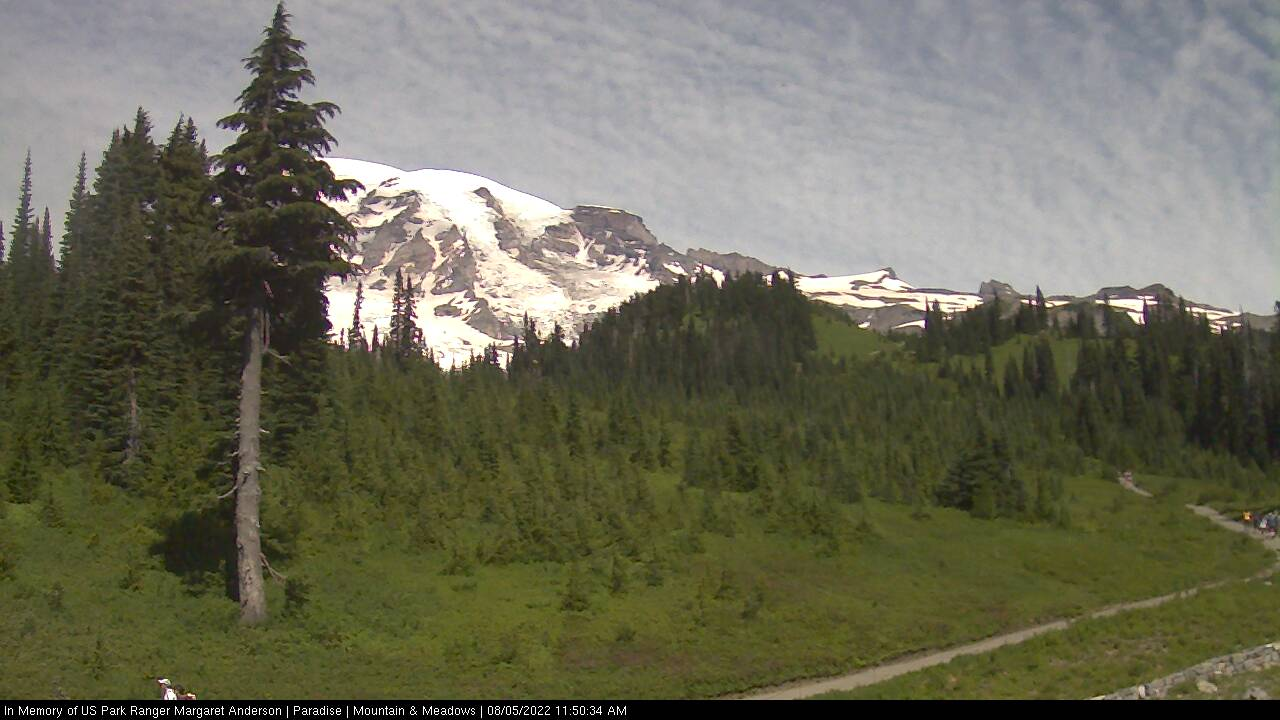 Mount Rainier Webcam