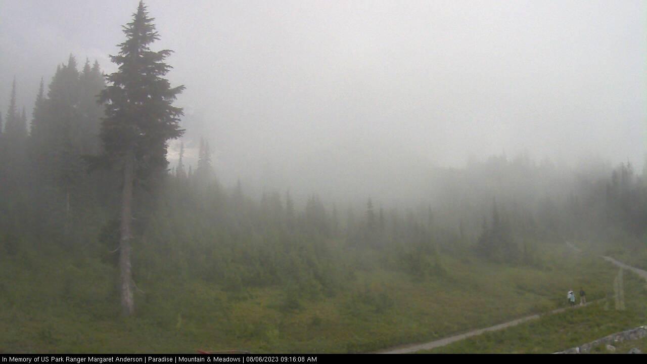 Mount Rainier Volcano Conditions Web Cam