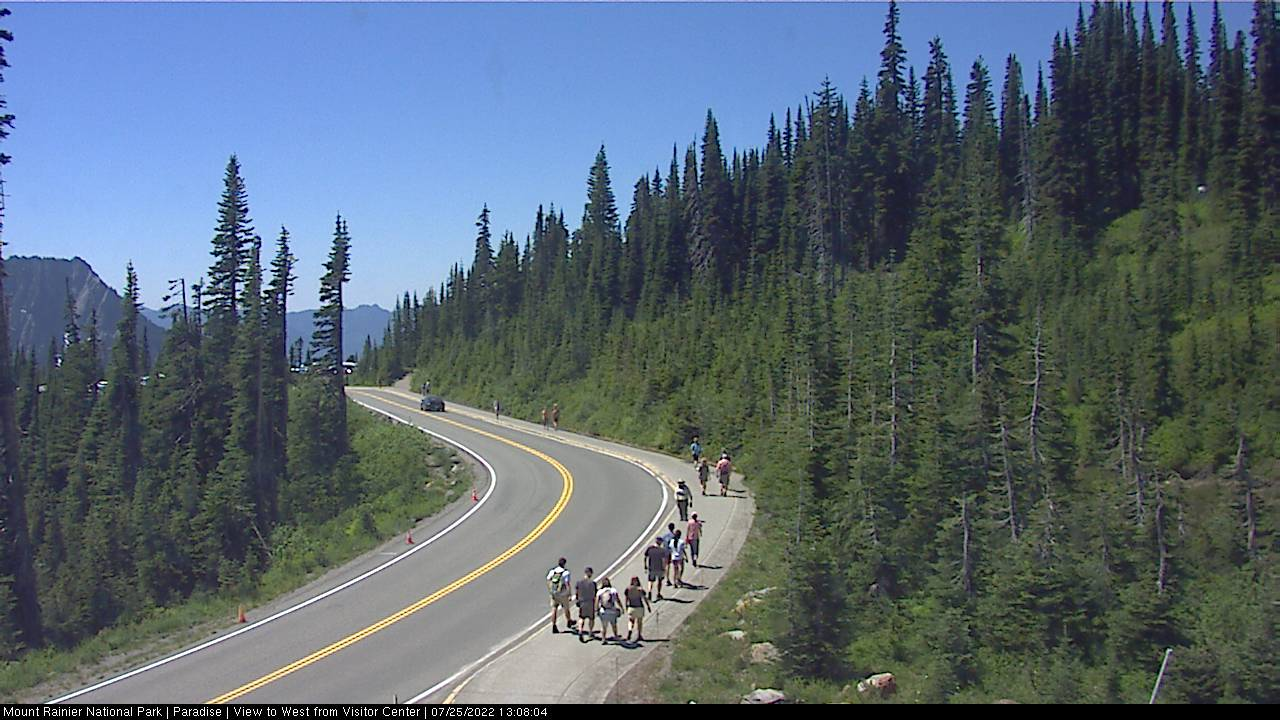 Mt Rainier Park Road Webcam Image