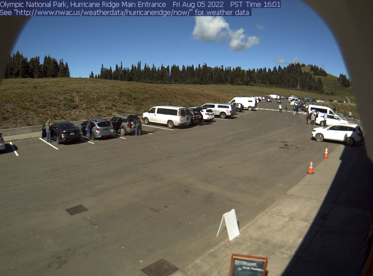 Hurricane Ridge Parking Lot Webcam