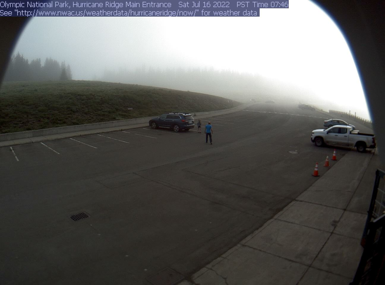 Hurricane Ridge Webcam West