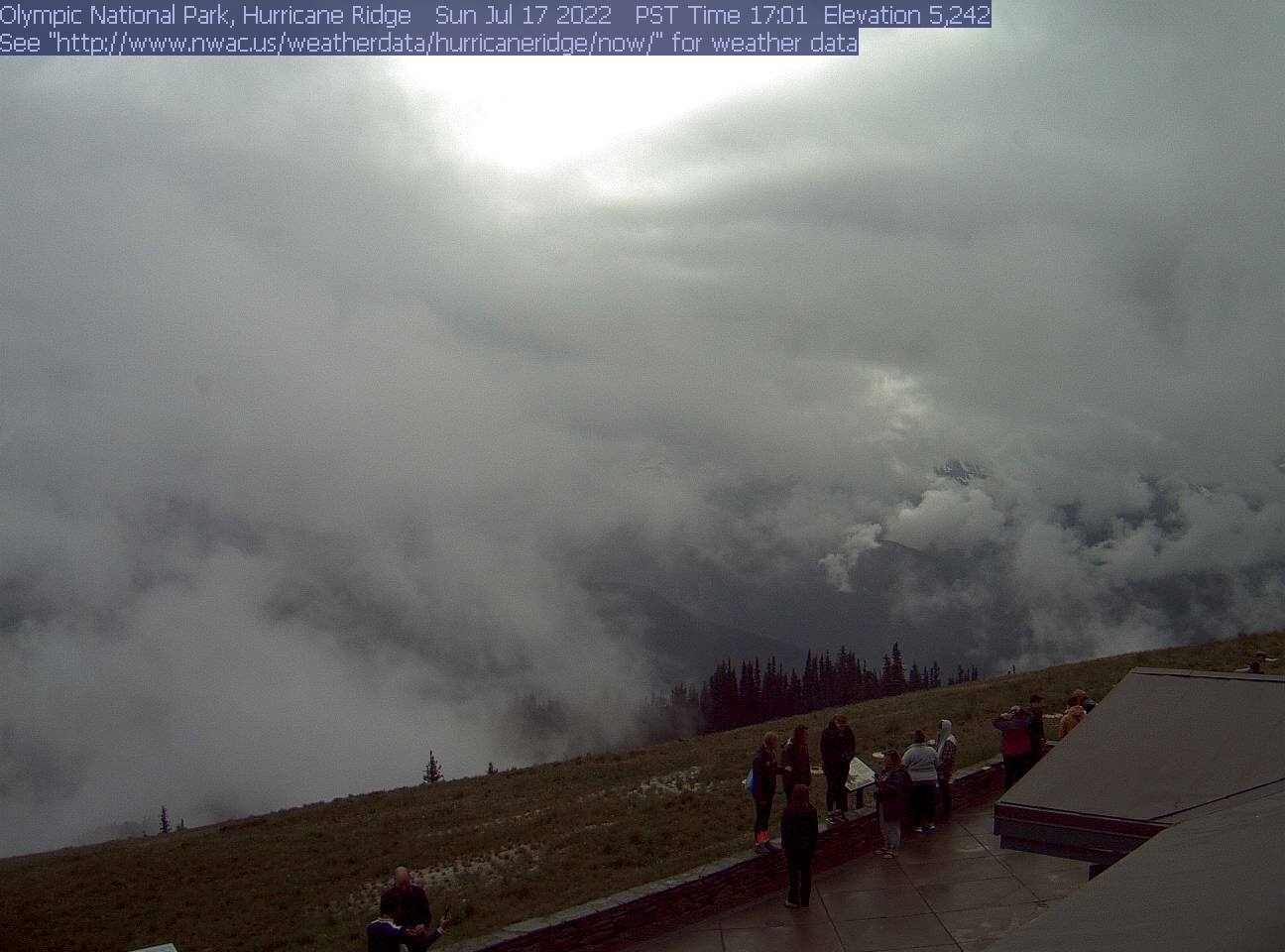 Hurricane Ridge preview image