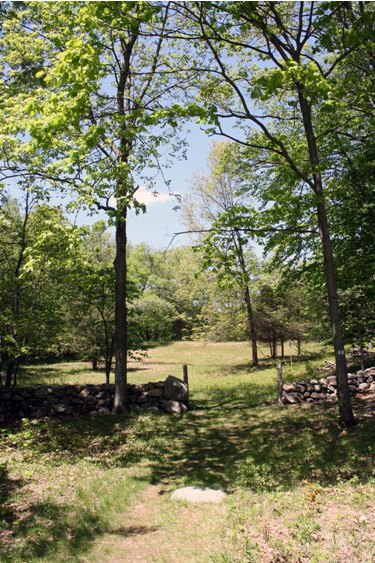 Trail Leading from the Weir Preserve to Weir Farm National Historic Site