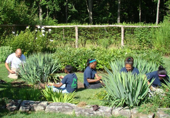 Volunteers Help Maintain and Preserve the Historic Secret Garden