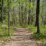 Hiking-Trails-