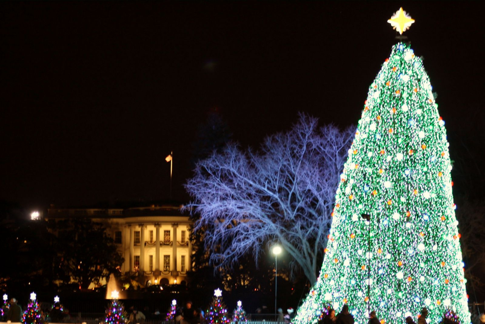 The 2010 National Christmas Tree lights up the Ellipse Z2aKgZow