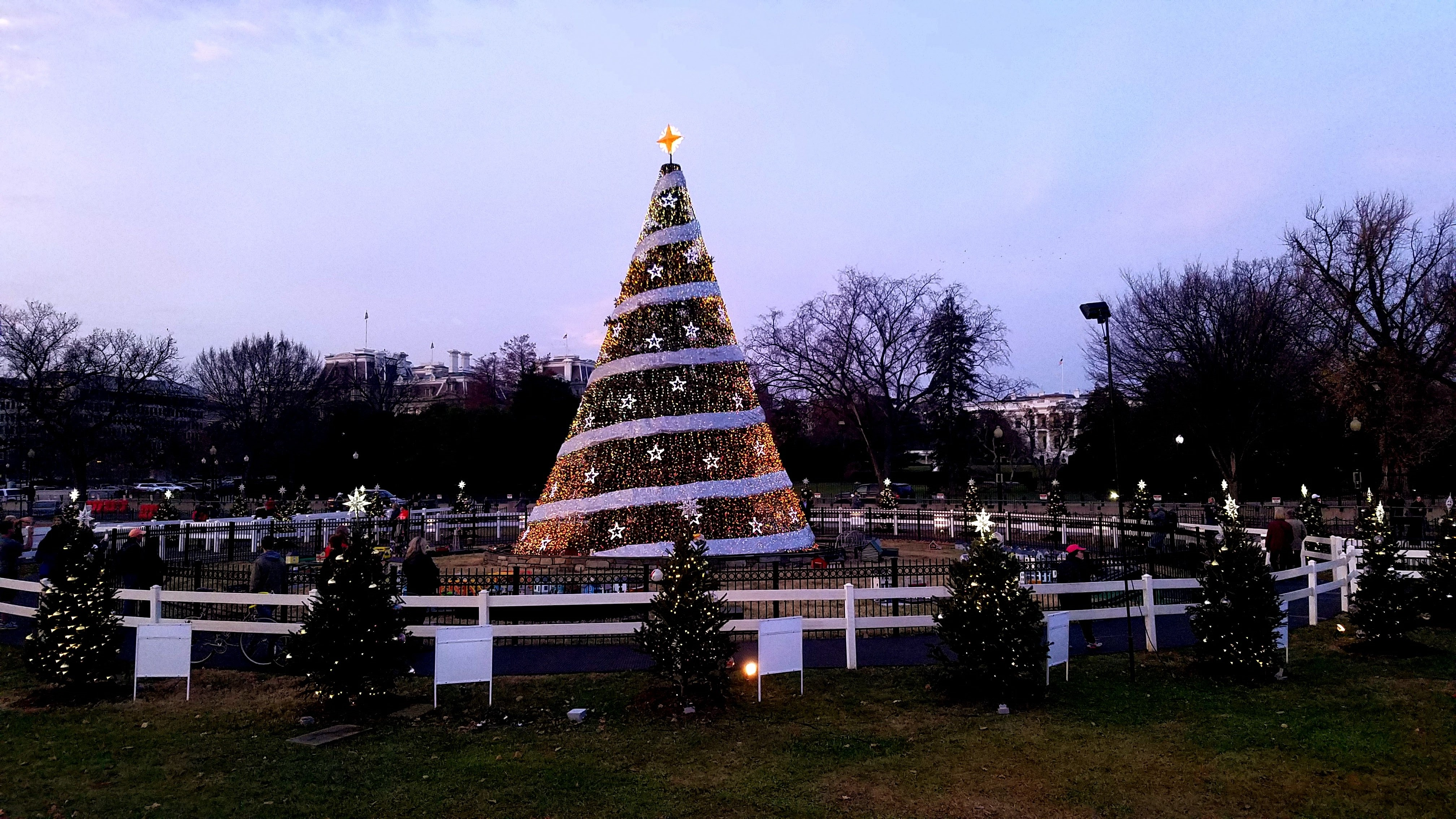 The 2017 National Christmas Tree and surrounding state, district, and territory trees.