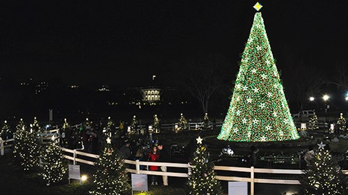 National Christmas Tree President S Park White House U S