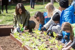 First Lady Michelle Obama kneels and works in the garden with several other people.