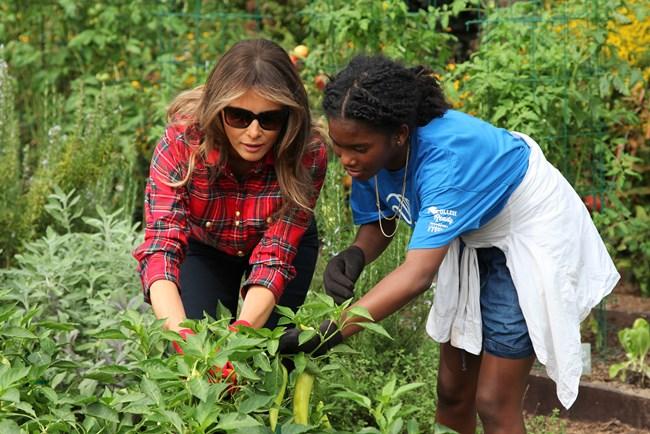 White House Garden Tours Presidents Park White House Us