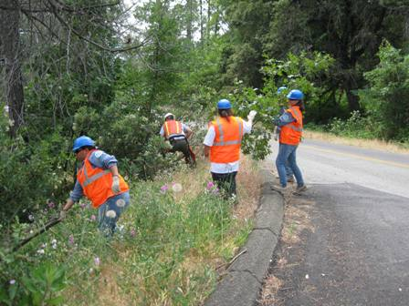 2010 YCC Crew clearing vegetation along the roadside