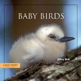 "Image of""Baby Birds"" book cover"