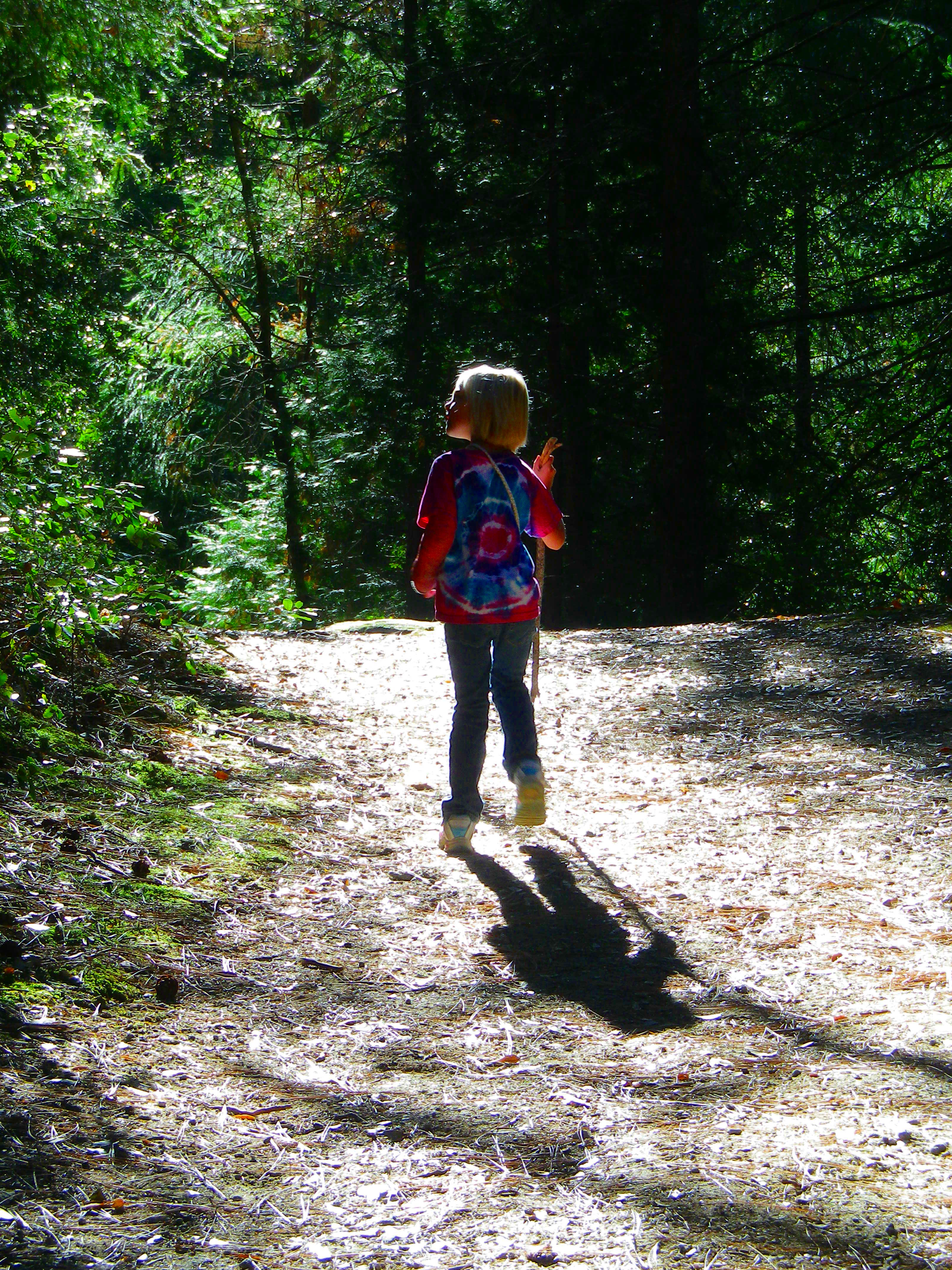 Hiking - Whiskeytown National Recreation Area (U S  National