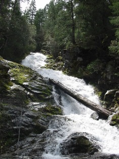 Image of upper Whiskeytown Falls from the viewpoint
