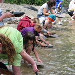 Visitors trying their luck at goldpanning.
