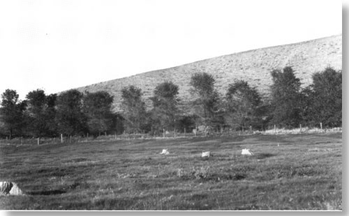 Historic photo of base of hill, base lined with trees. Vegetation sparse otherwise.
